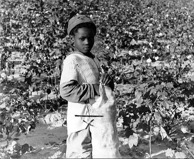 Kinderarbeit auf Baumwollfeld |  Bild: ©  Kheel Center [CC BY 2.0]  - flickrKinderarbeit auf Baumwollfeld