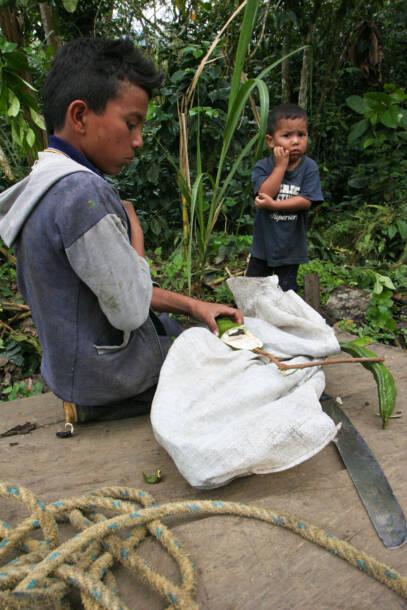 Kinderarbeiter in KolumbienVor allem in der kolumbianischen Landwirtschaft sind viele Kinder beschäftigt. |  Bild: © Danielle Pereira [CC BY 2.0]  - flickrKinderarbeiter in Kolumbien