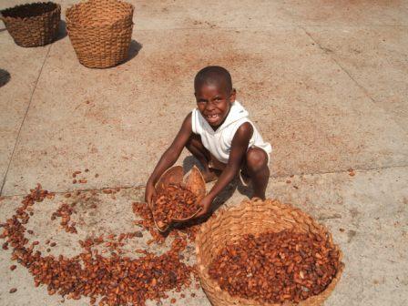 Ein Kind bei der Verarbeitung von Kakaobohnen |  Bild: © Electrolito [CC BY-SA 3.0]  - Wikimedia Commons