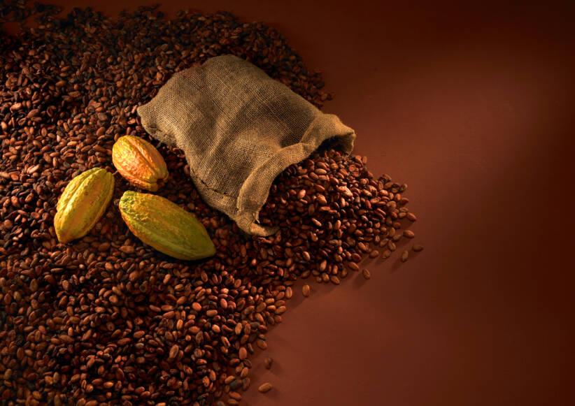 KakaobohnenKakaobohnen |  Bild: © Sean Soh [Royalty Free]  - DreamstimeKakaobohnen