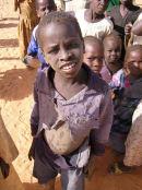 Westafrika: Acht Kakao- und Schokoladenfirmen kämpfen gegen Kinderarbeit
