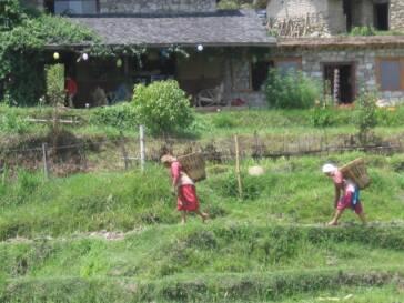 Nepal: Kinderarbeit im touristischen Sektor