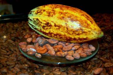 Öko-Test testet 25 dunkle Schokoladen