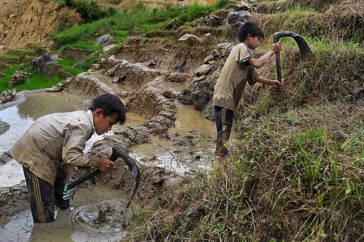 Die fortwährende Spirale von Armut und Kinderarbeit in Vietnam