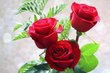 Rote Rosen: Liebesbeweise auf Kosten von Kindern