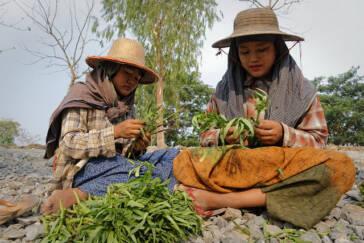 Produktionsstandort Myanmar: Unternehmen profitieren von Kinderarbeit